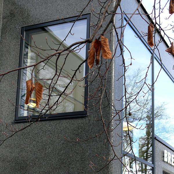 002_Verdi_Fenster